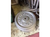 golds gym weight plates x4