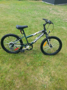 Kids bike 20 inch wheels suit 5-9 year old