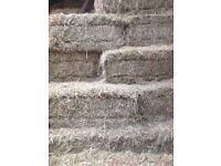 Hay for sale! ( farm shed silage sheep horses calves)