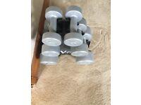 Set of hand weights