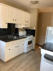 University Area – Renovated One Bedroom Suite Available Now