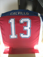 ****Anthony Calvillo Signed Montreal Alouettes Jersey****