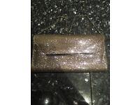 sparkly purse