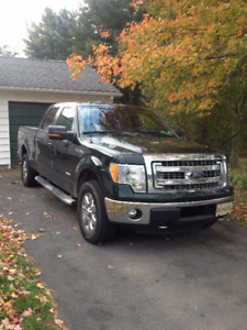 2013 Ford F-150 Other
