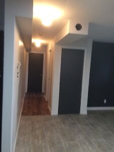 Newly Renovated One Bedroom Apartment in Airport Heights St. John's Newfoundland image 4