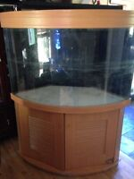 92g aquarium/fishtank with sump