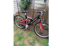 Raleigh adult mountain bike