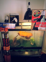 """ExoTerra Reptile Tank 24""""x18""""x18"""" + Lots of extras Complete KIT"""