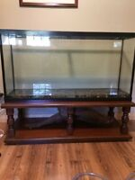 65 gal aquarium with coffee table
