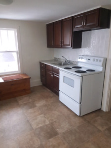 2 Bed Apt Recently Renovated in Downtown