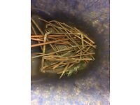 Scrap Copper Brass Lead Cable Aluminium Stainless Steel bought & Collected 7 Days a Week