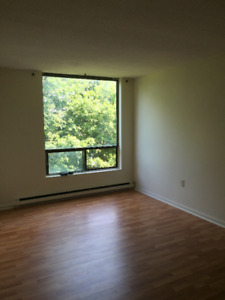 Downtown February sublet and optional lease extension-south end
