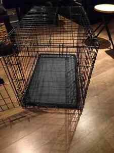 Cage pour chiot ou petit chien et autres articles support pipi p