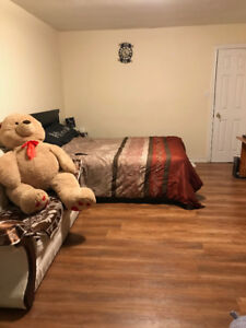 Bedroom house for Rent