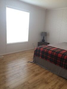 Roommate wanted in Leduc