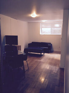Downtown, concordia, 1 brm, fully furnished, Step to everything