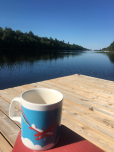 Cottage with paved runway beside lake for sale