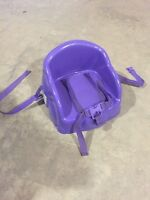 Purple Booster Chair