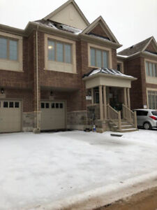 Brand new GreatGulf Townhouse for rent in Milton