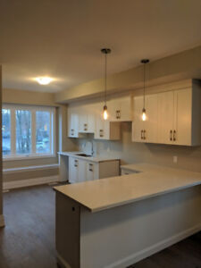 New End Unit 3Bdrm + 4Bthrm Town-home in Village of Ancaster