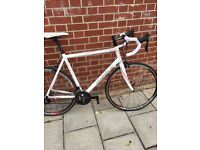Ribble sportive road racing bike