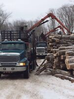 Firewood logs or culls for sale