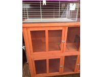 5ft HUTCH + extras (3 month old)