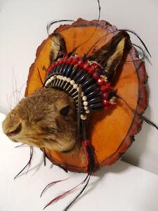 hey jack MOUNT Native Indian beaded headdress OMG lol UNIQUE Cambridge Kitchener Area image 2