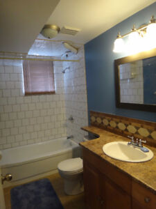 Fully Renovated Bsmt Suite Next to Dog Park. Available Jan 1st