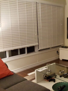 "2"" Faux wood Blinds (White)"