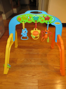 Activity Gym Play Set