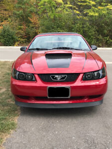 MINT 2000 Ford Mustang Convertible $8,500 OBO SAFETIED