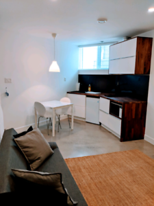 Guest house Neuf -TOUT INCLUS - Metro Charlevoix lionel groulx