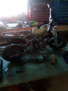 Looking for 50 cc mini bikes