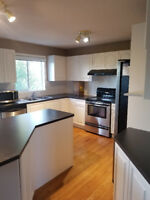 Cabinet Repaint, Refinishing at Affordable Pricing