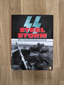 SS Steel Storm panzer battles 1943-45