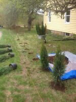 Year round property maintenance wolfville to coldbrook