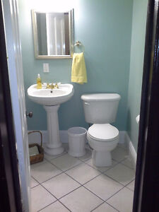 fully furnished 4 bedroom St. John's Newfoundland image 10