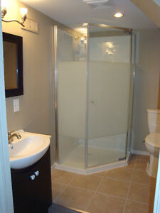 SUPER SPACIOUS AND BEAUTIFUL 3 bdrm apt in Walkerville