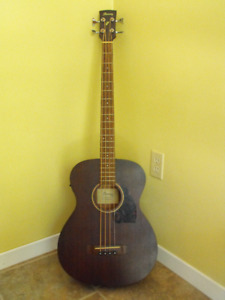 Acoustic/electric bass