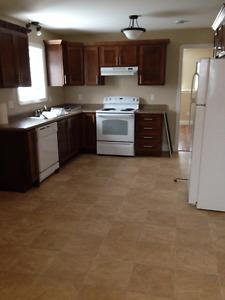 Beautiful 2 bedroom basement apartment available June 1st