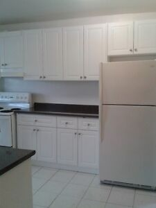 Two-Bedroom-Apartment for Rent (Gerrard St and Pape Ave)