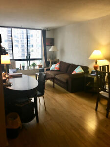 Sublet from December 15th to March 1st - 3 1/2 apartment