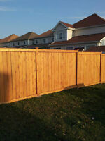 Carpenter / Decks and Fences/Outdoor projects