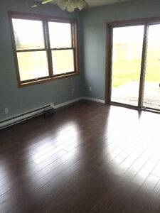 Completely Renovated Large 2 Bedroom Modular Home London Ontario image 10