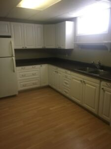 Newly Renovated Southside 3 Bedroom Basement Suite, $1100