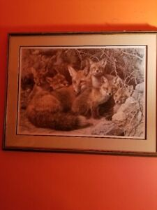 "Carl Brenders ""Fox Family Five"" framed print"