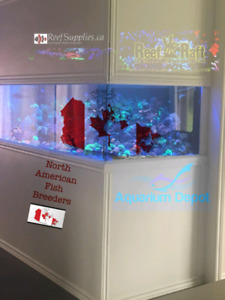come join reef canada