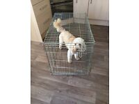 Dog carrier (cage only)