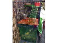 Large gerbil cage